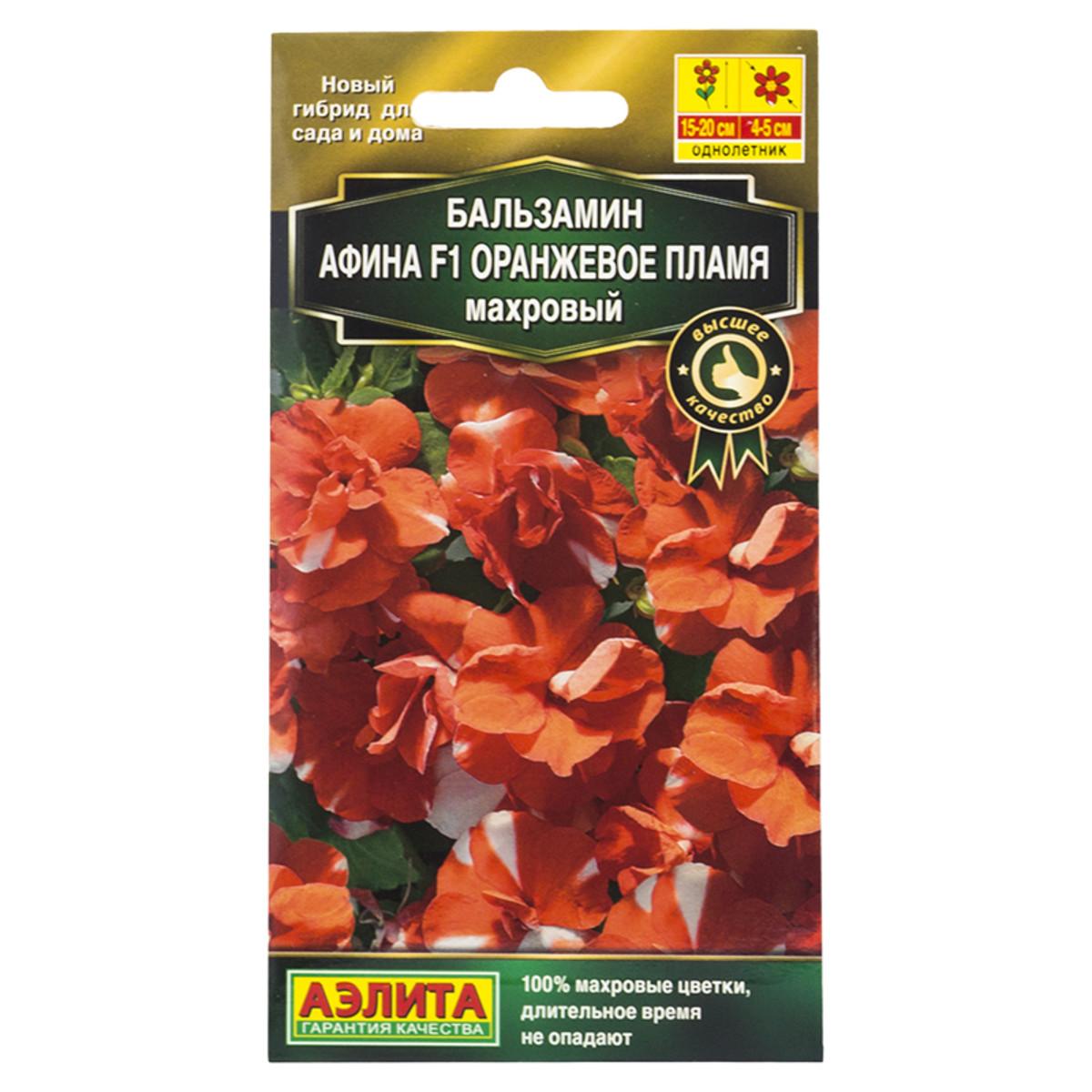 Бальзамин махровый оранжевое пламя «Афина» F1