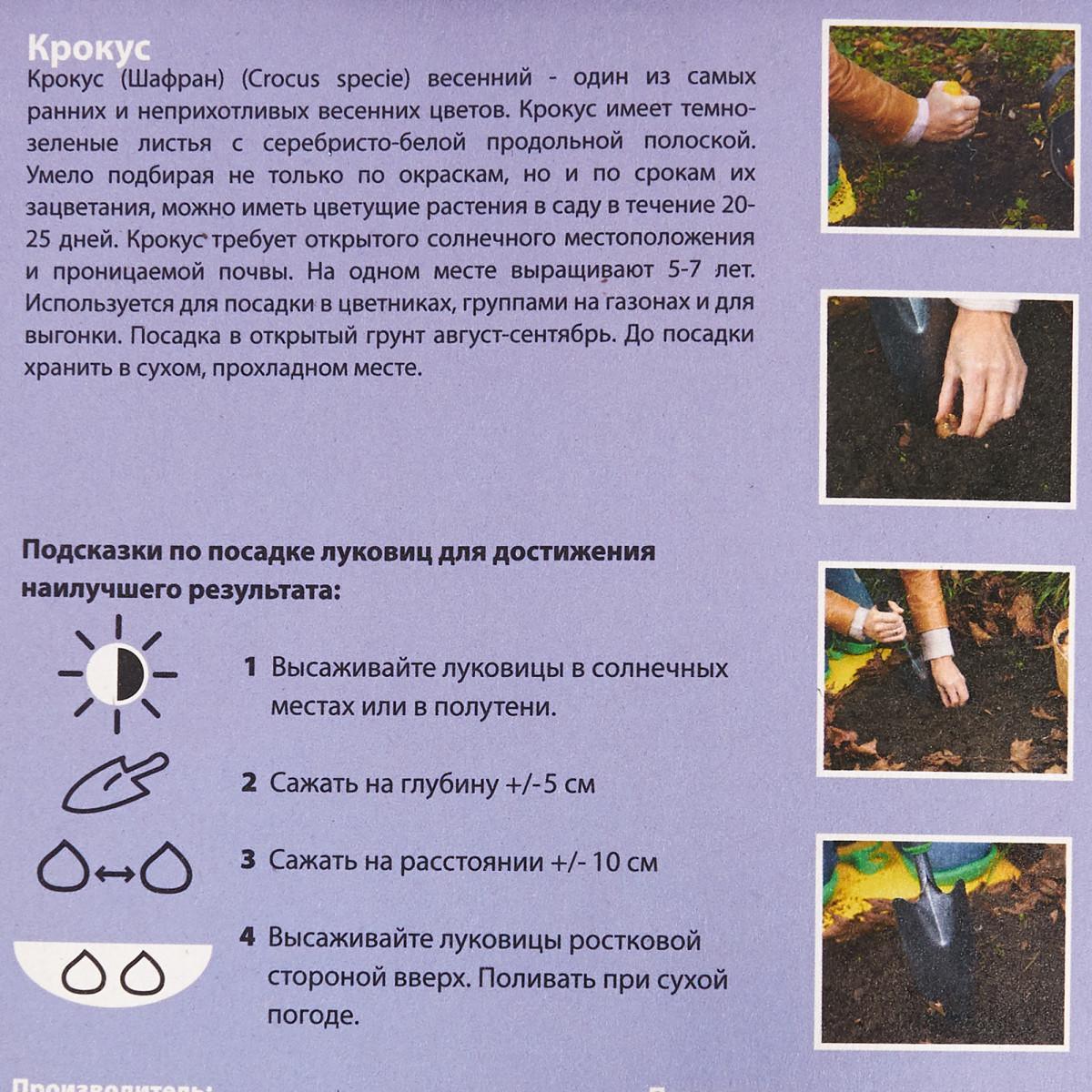 Крокусесь Ботанических 5/6 (25/12)