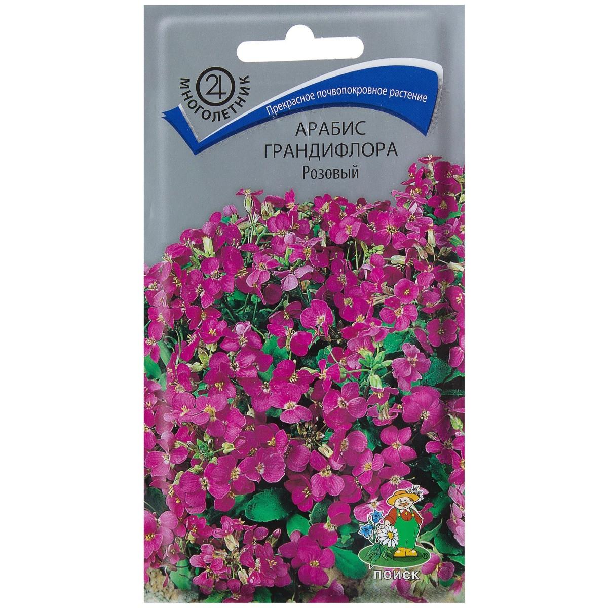 Арабис грандифлора цвет розовый