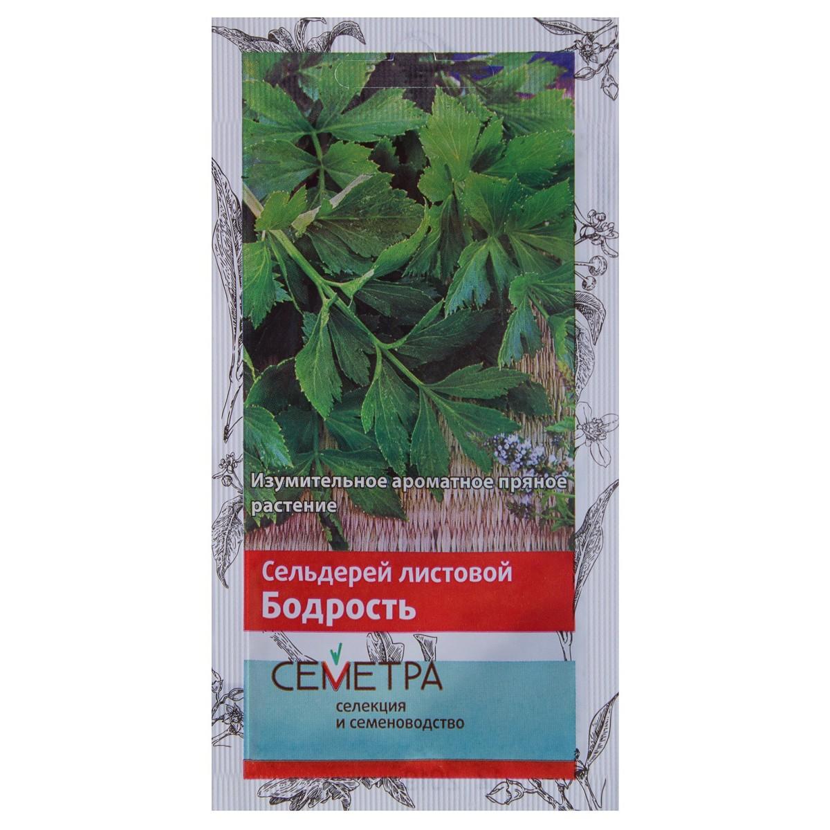 Семена Сельдерей листовой Бодрость