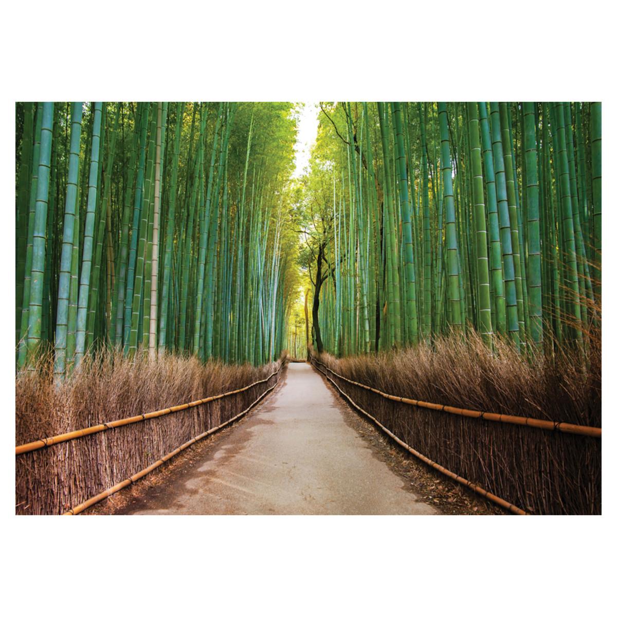 Фотообои флизелиновые «Бамбуковый лес» 360х254 см