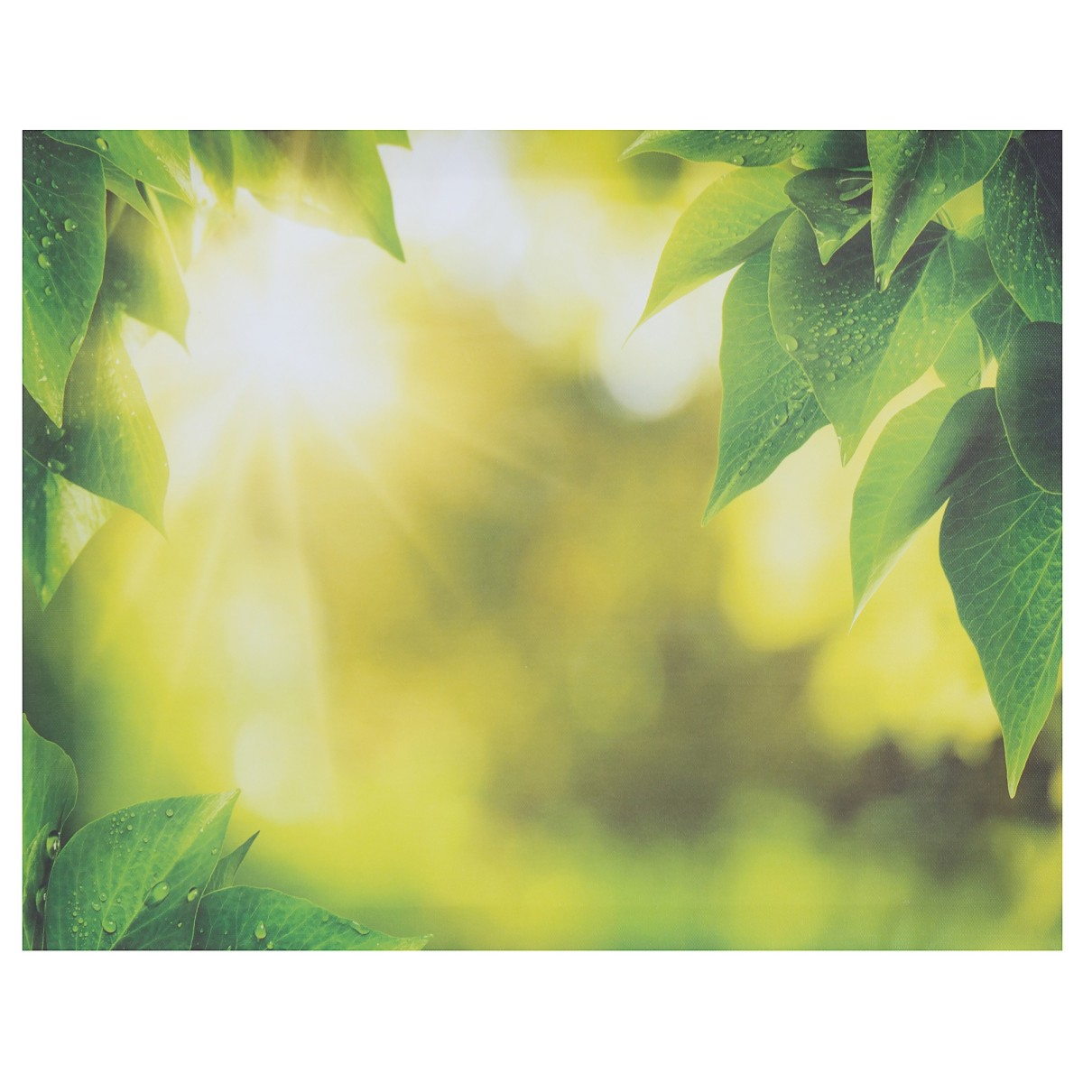 Холст 50х40 см «Листья»