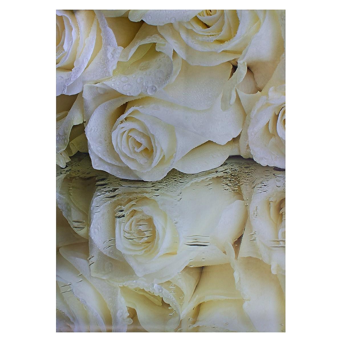 Фотообои бумажные «Белые розы» 368x254 см