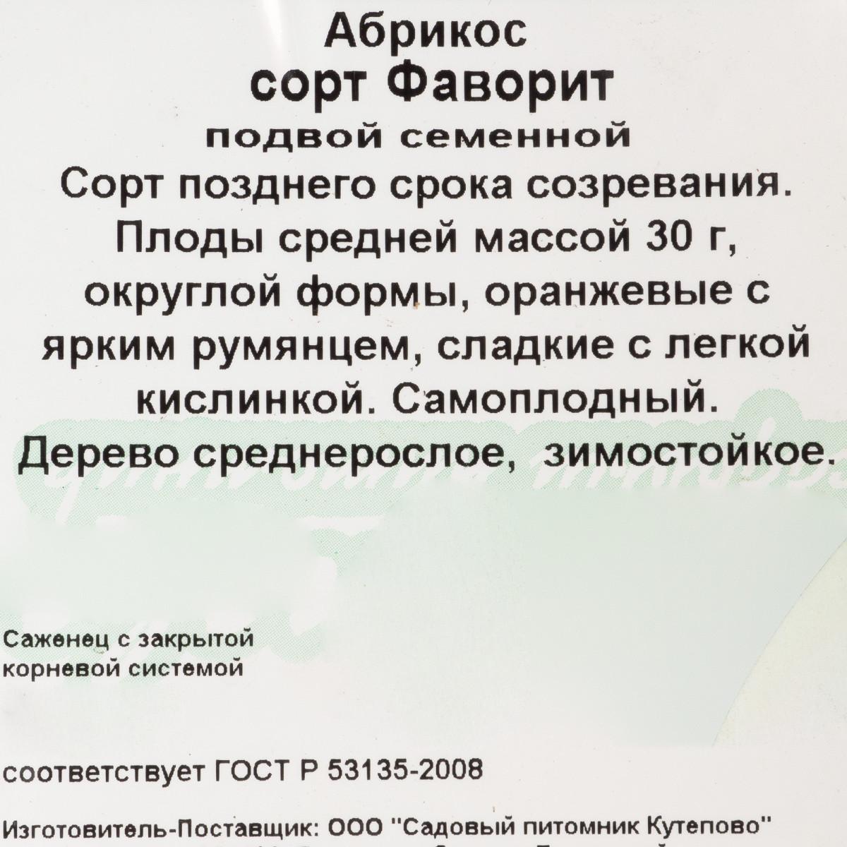 Абрикос С4 «Фаворит» h100-120