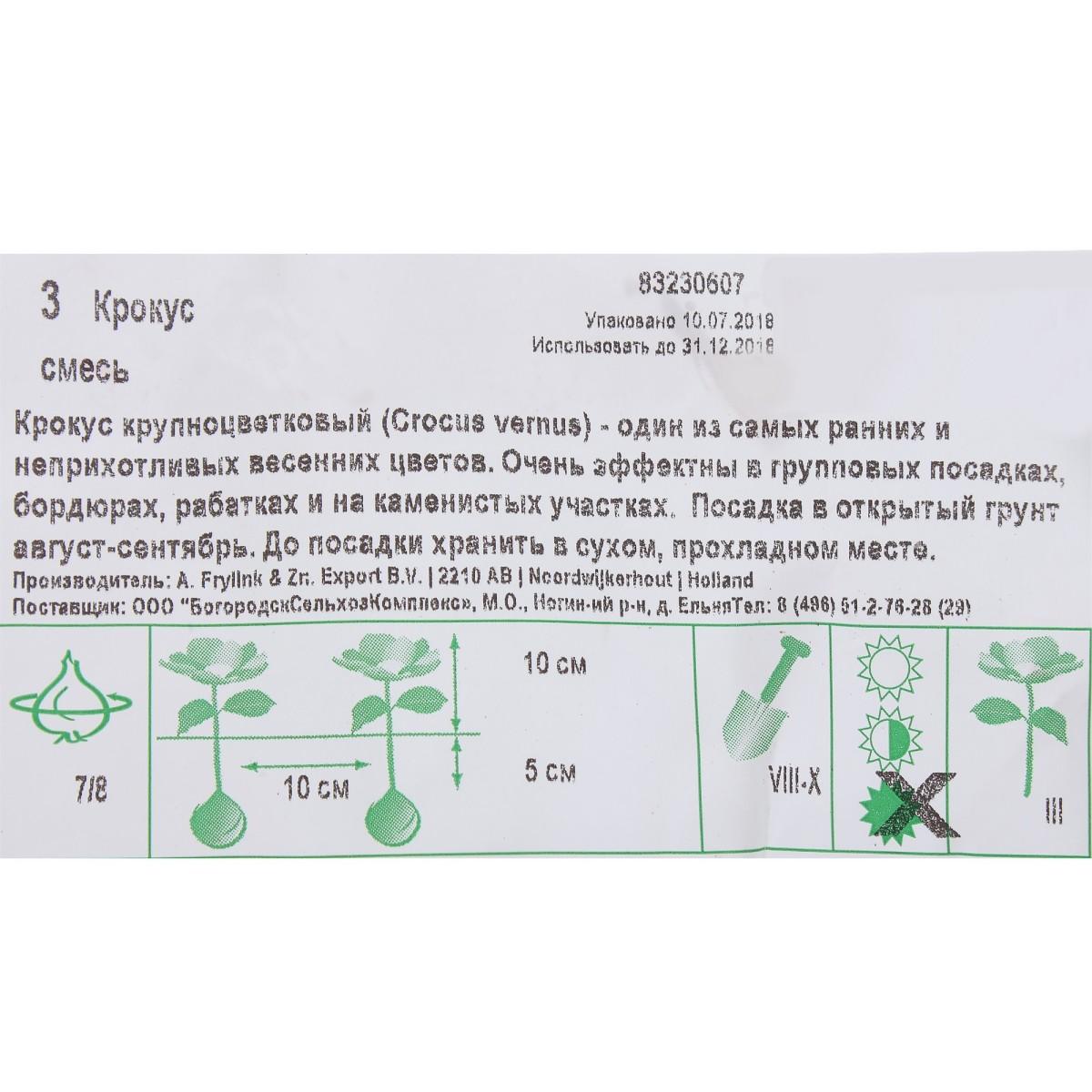 Крокусесь Сортов Размер Луковицы 7/8