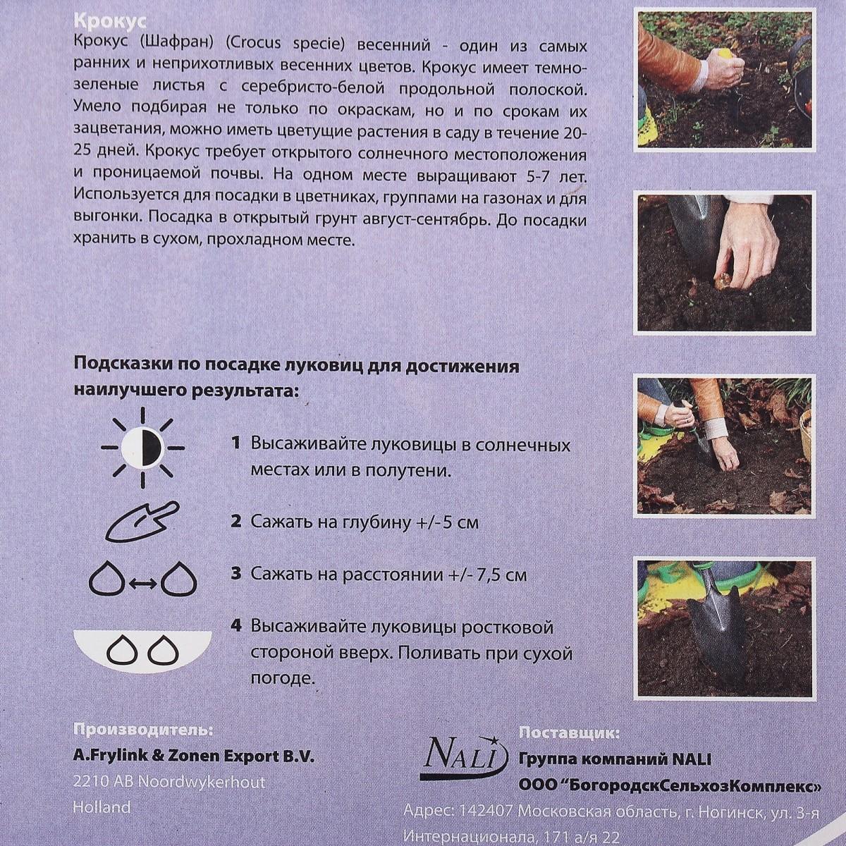 Крокус Триколор Размер Луковицы 5/7