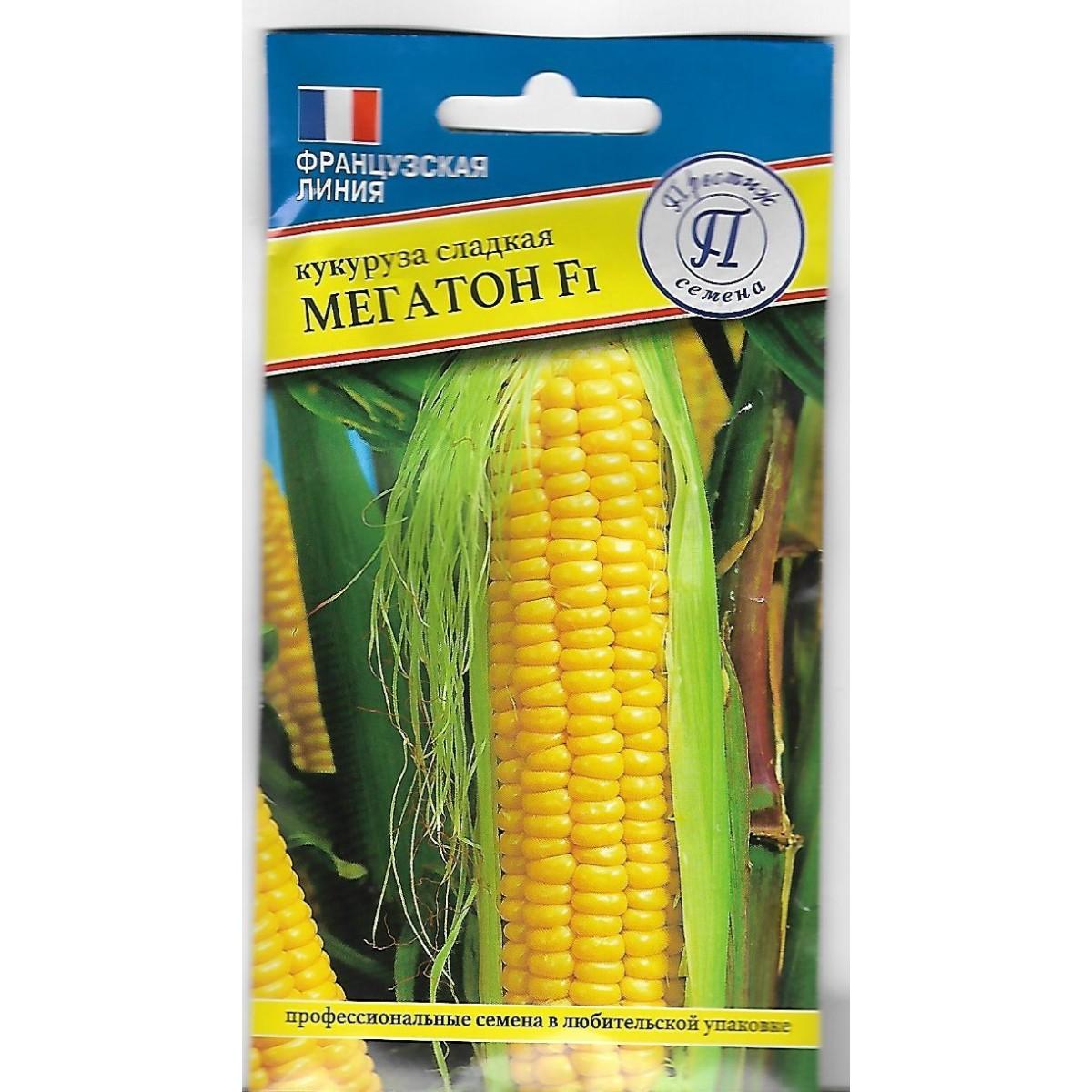 Семена Кукуруза сладкая Мегатон F1