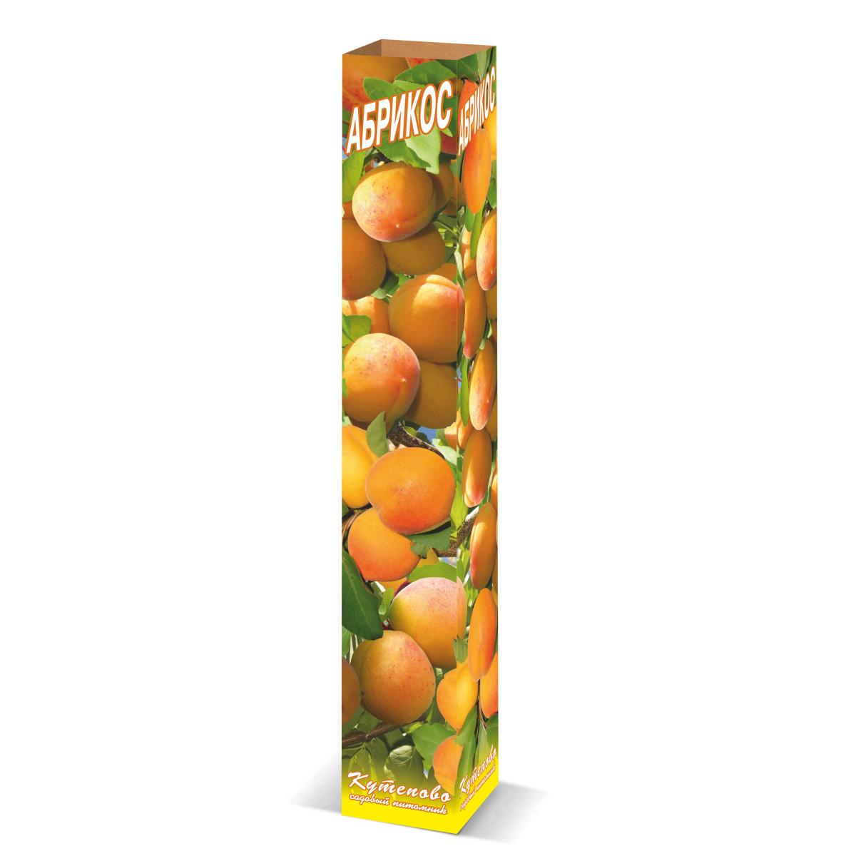 Абрикос «Алёша» в коробке