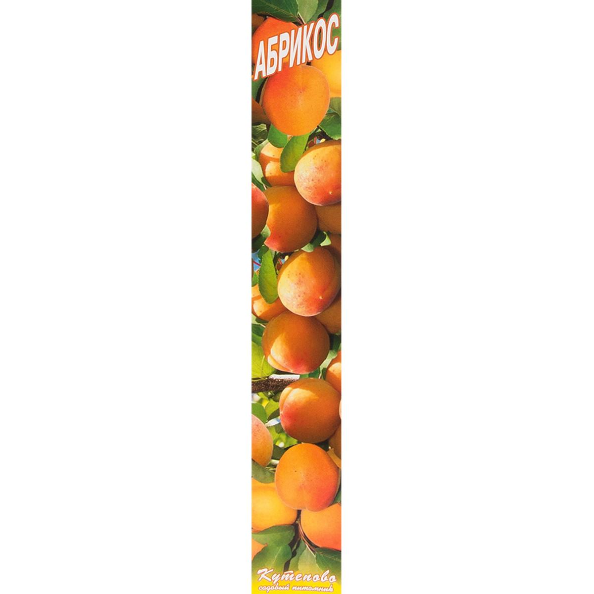 Абрикос «Краснощекий» в коробке