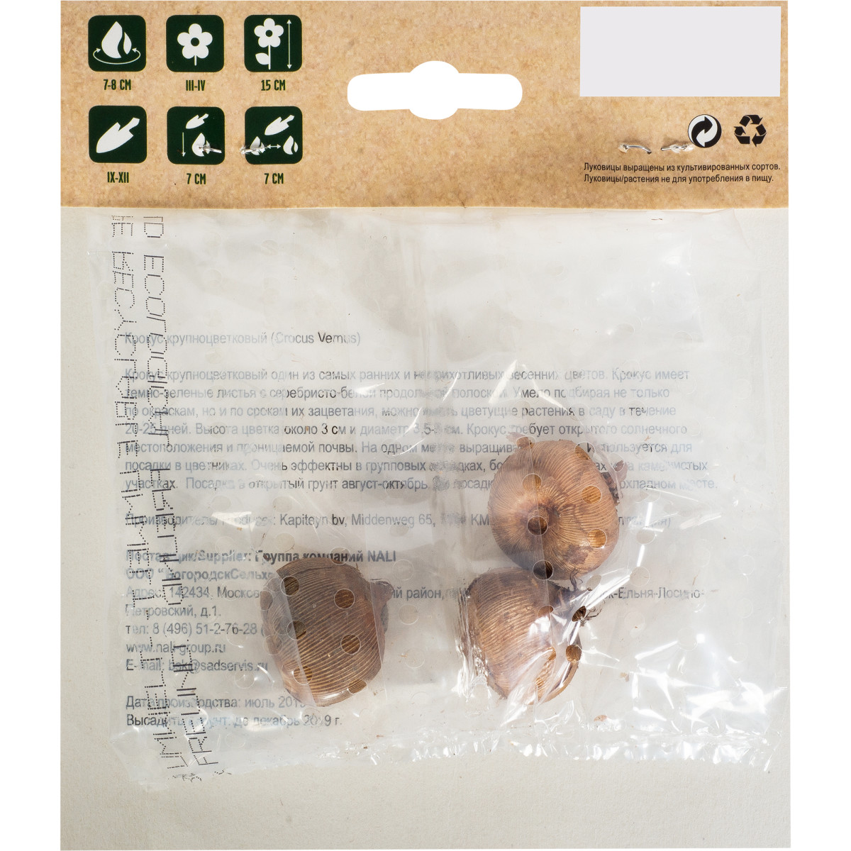 Крокус Yellow Mammouth Размер Луковицы 7/8 3