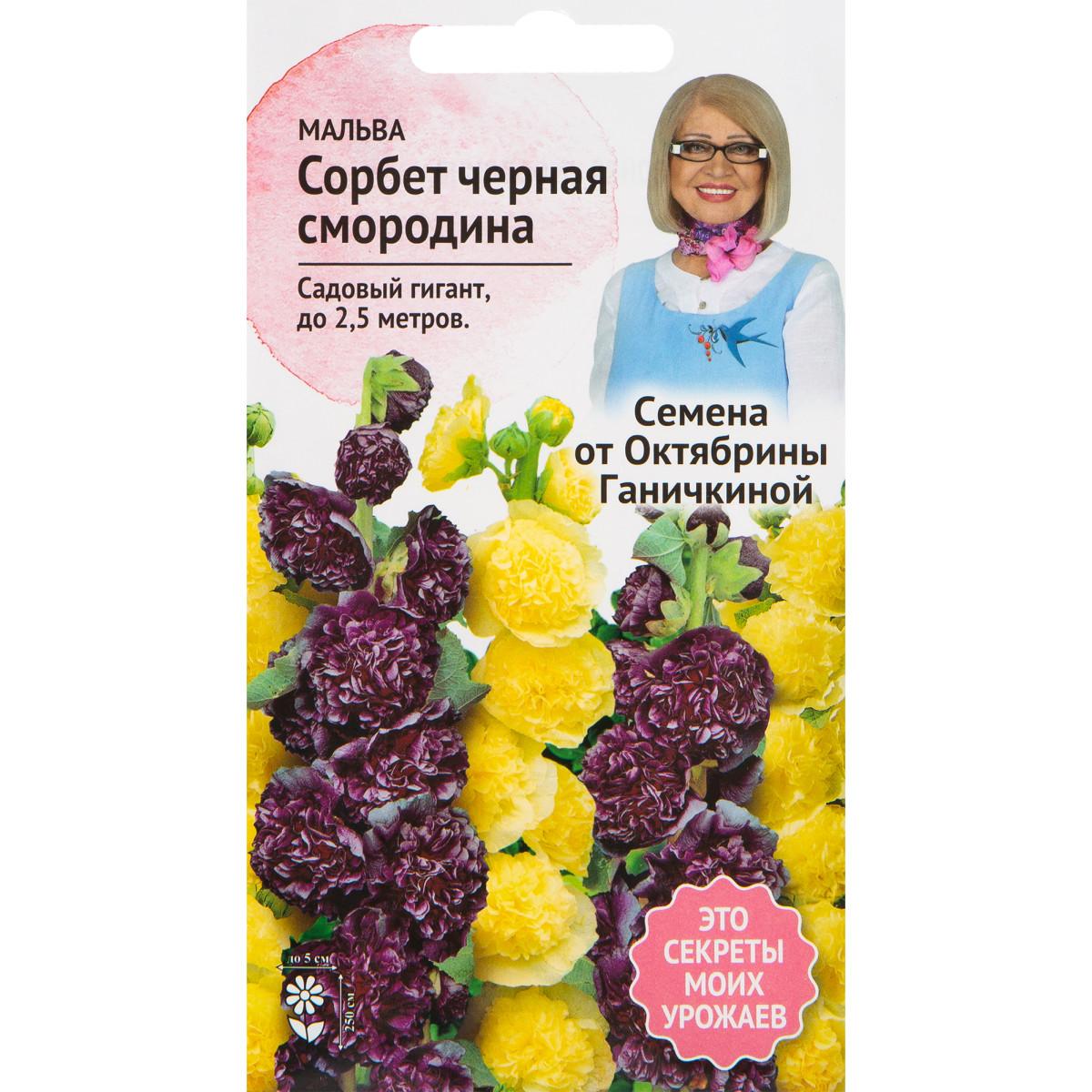 Мальва Сорбет Черная смородина 0.1 г