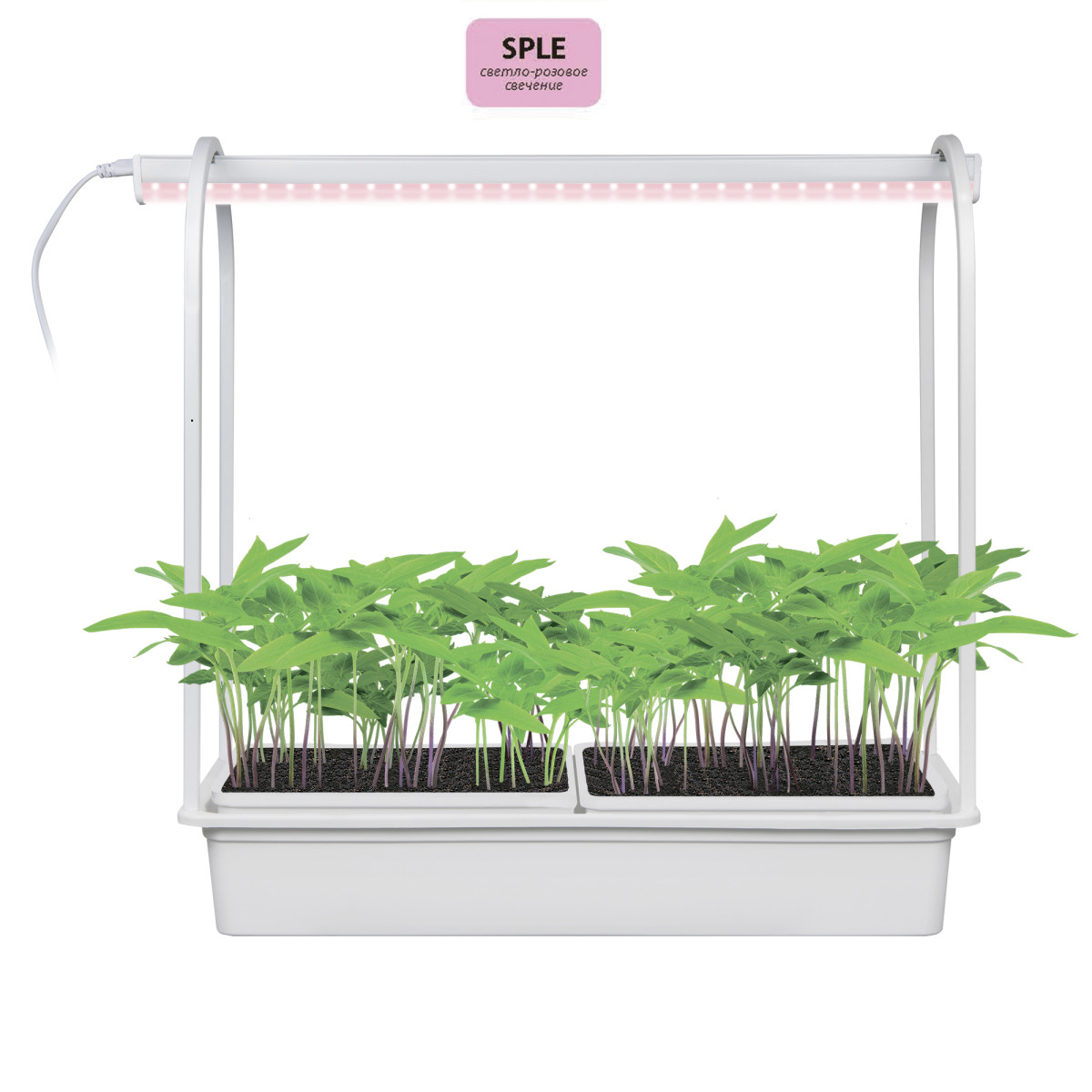 Светильник-минисад светодиодный для растений Uniel 540 мм 10 Вт нейтральный белый свет цвет белый