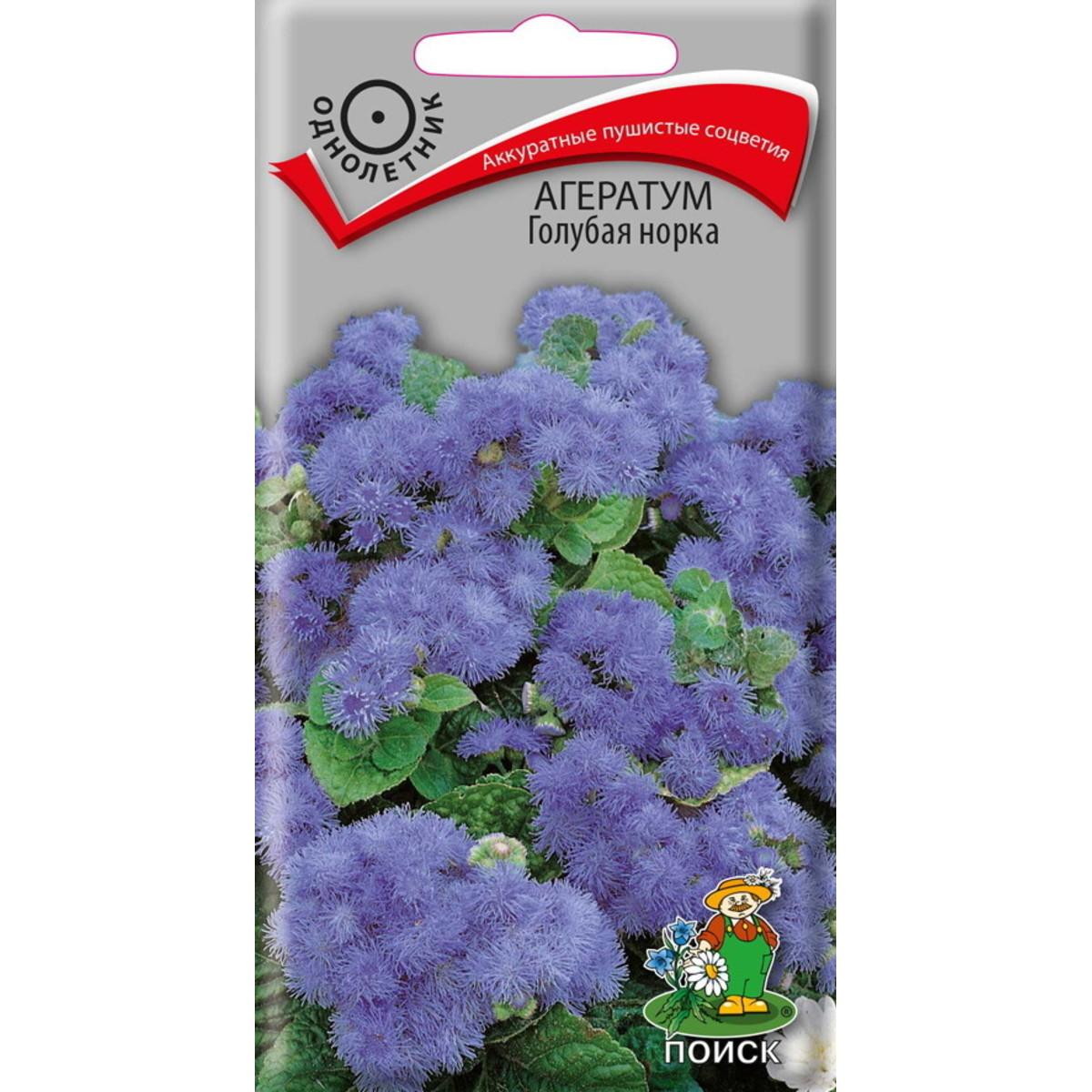 Семена Агератум Голубая норка