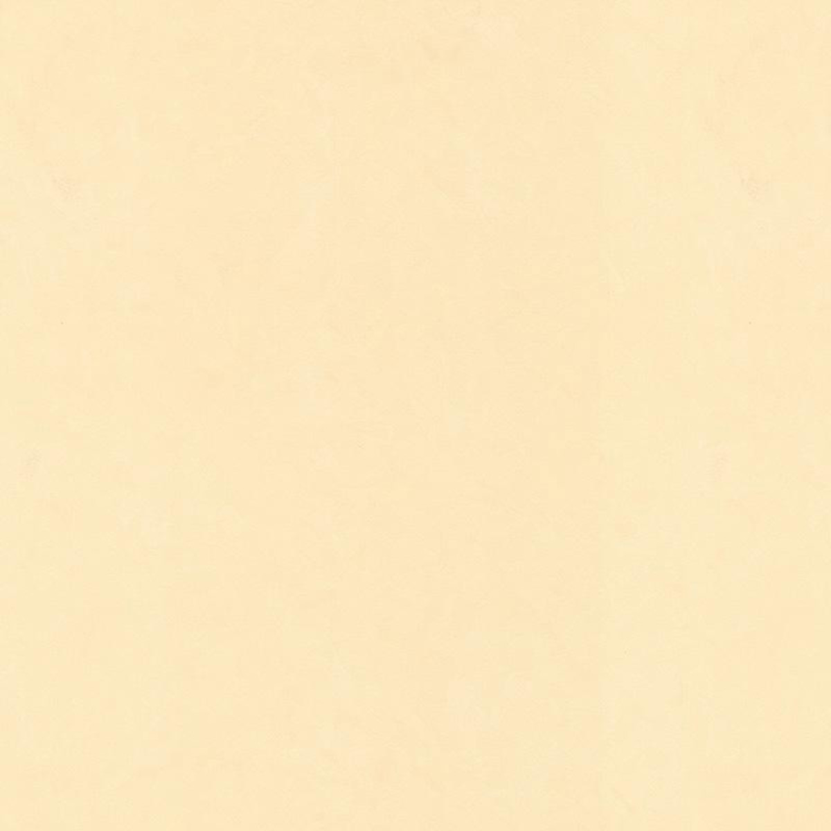 Обои флизелиновые Мир Авангард Штукатурка бежевые 1.06 м 45-018-03