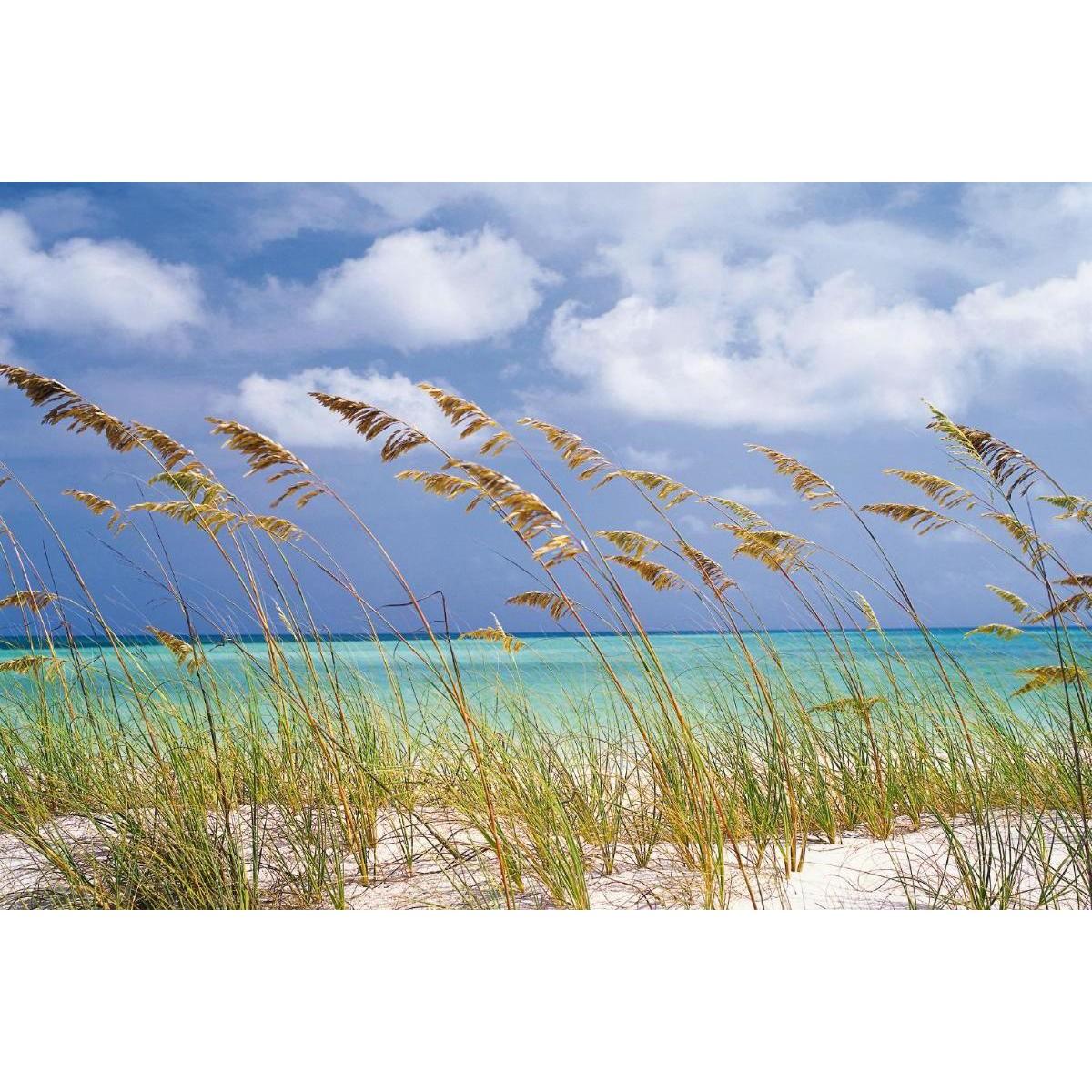 Фотообои Komar Ocean Breeze 8-515 368х254 см