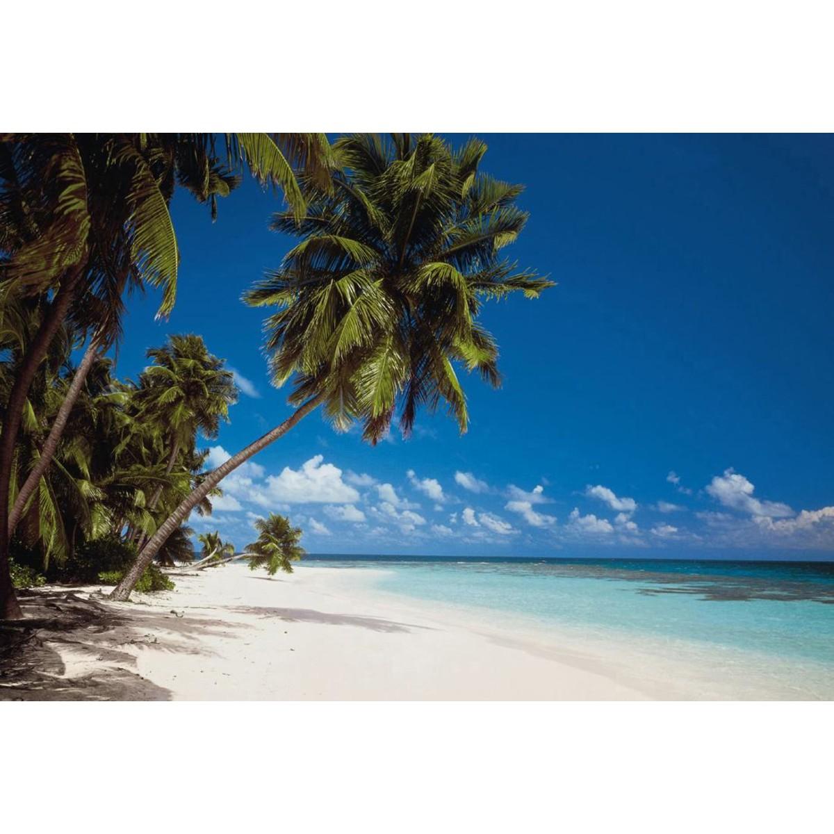 Фотообои Komar Maldives 8-240 388х270 см