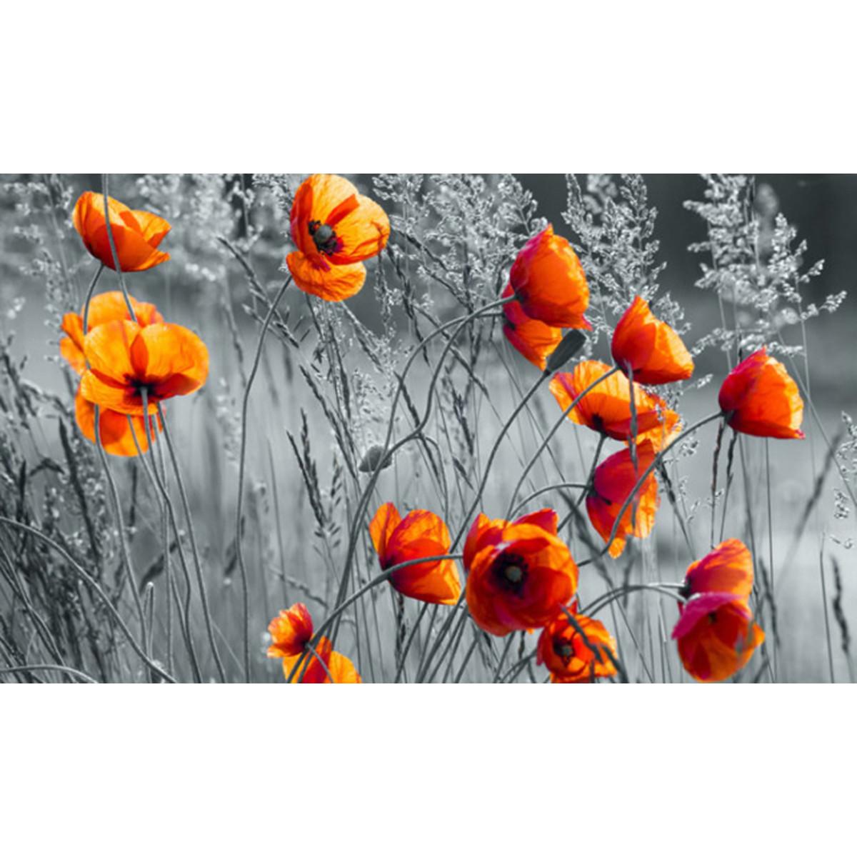 Фотообои For Wall Цветы 11746V8 368х254 см