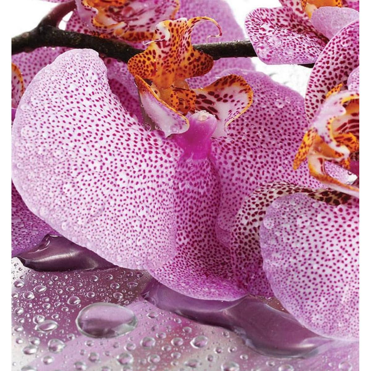 Фотообои For Wall Цветы 184P8 368х254 см