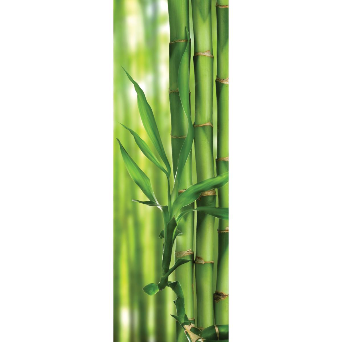 Фотообои флизелиновые OVK Design Природа 110084 100х300 см