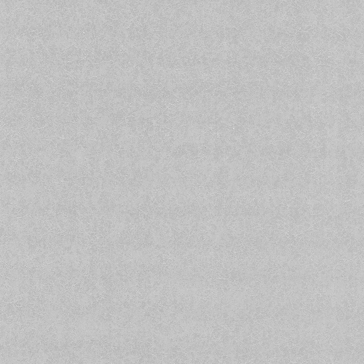 Обои флизелиновые P+S International Artemis серые 0.53 м 15012-20