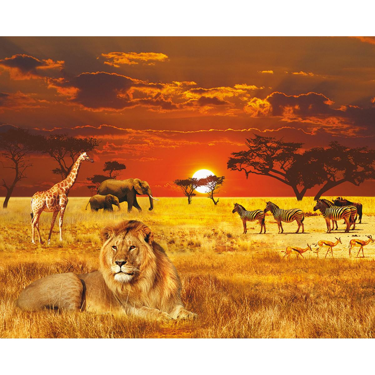 Панно Твоя планета Африка 315х254 см