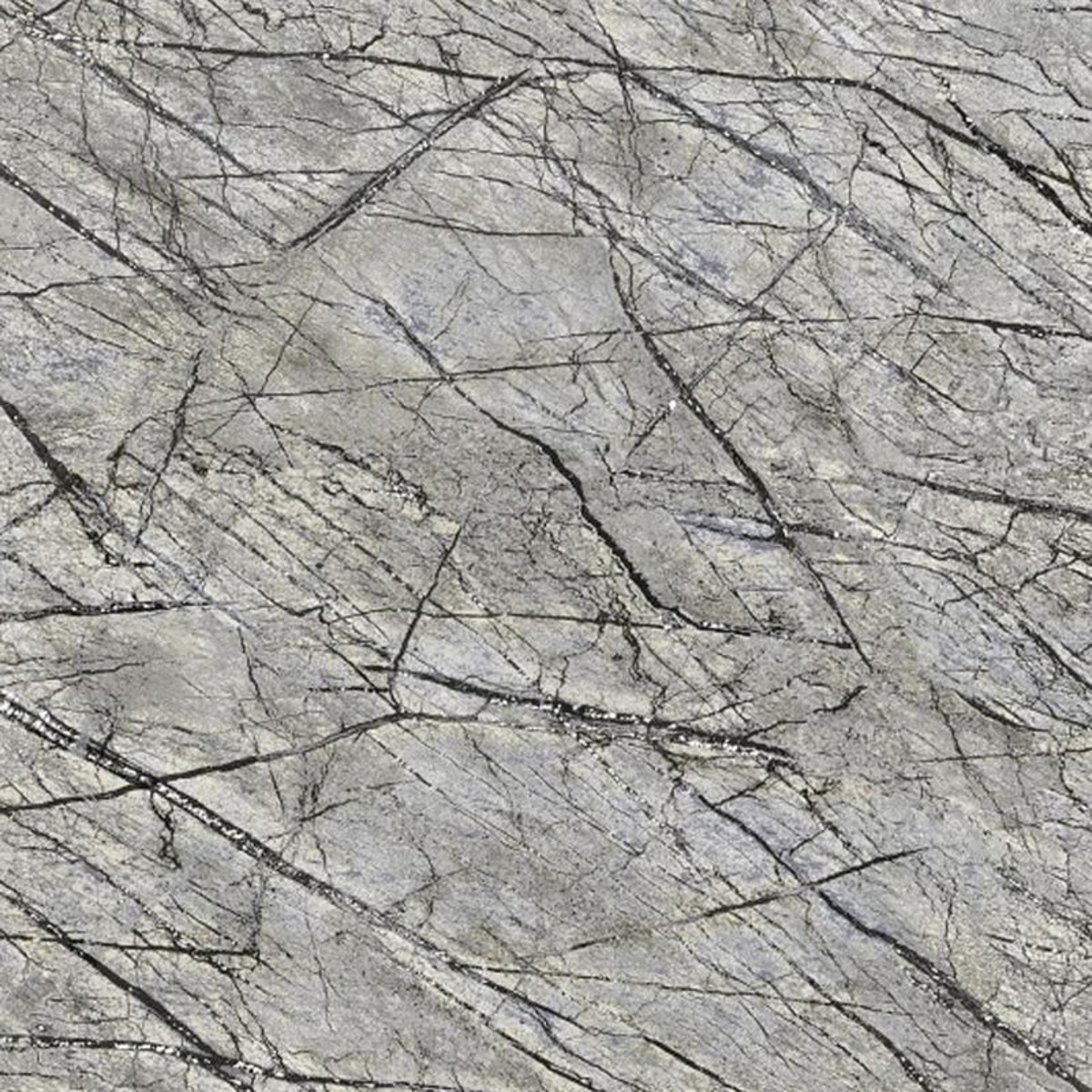 Обои флизелиновые Rasch African Queen II серые 0.53 м 474015