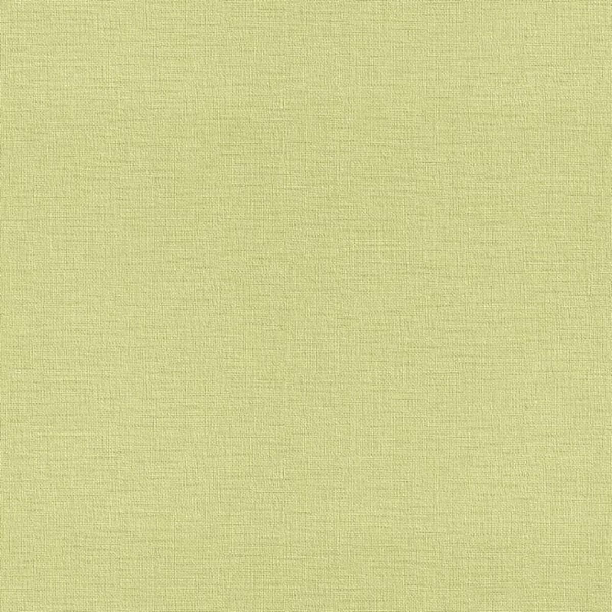 Обои флизелиновые Rasch b.b home passion 2016 зеленые 0.53 м 716962