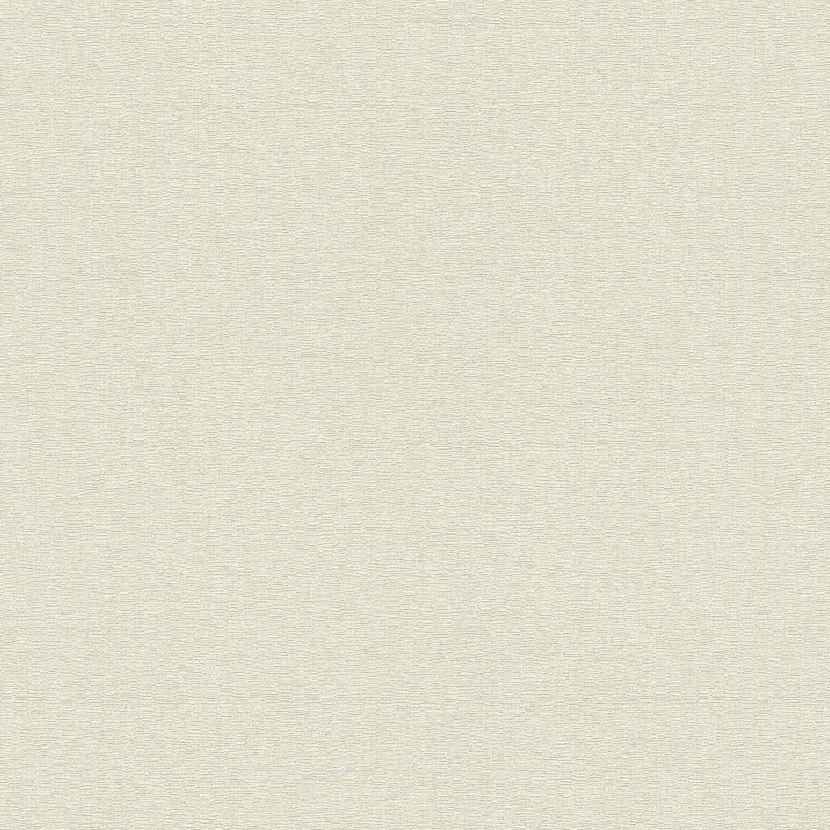 Обои флизелиновые Rasch Maximum XIII бежевые 1.06 м 936605