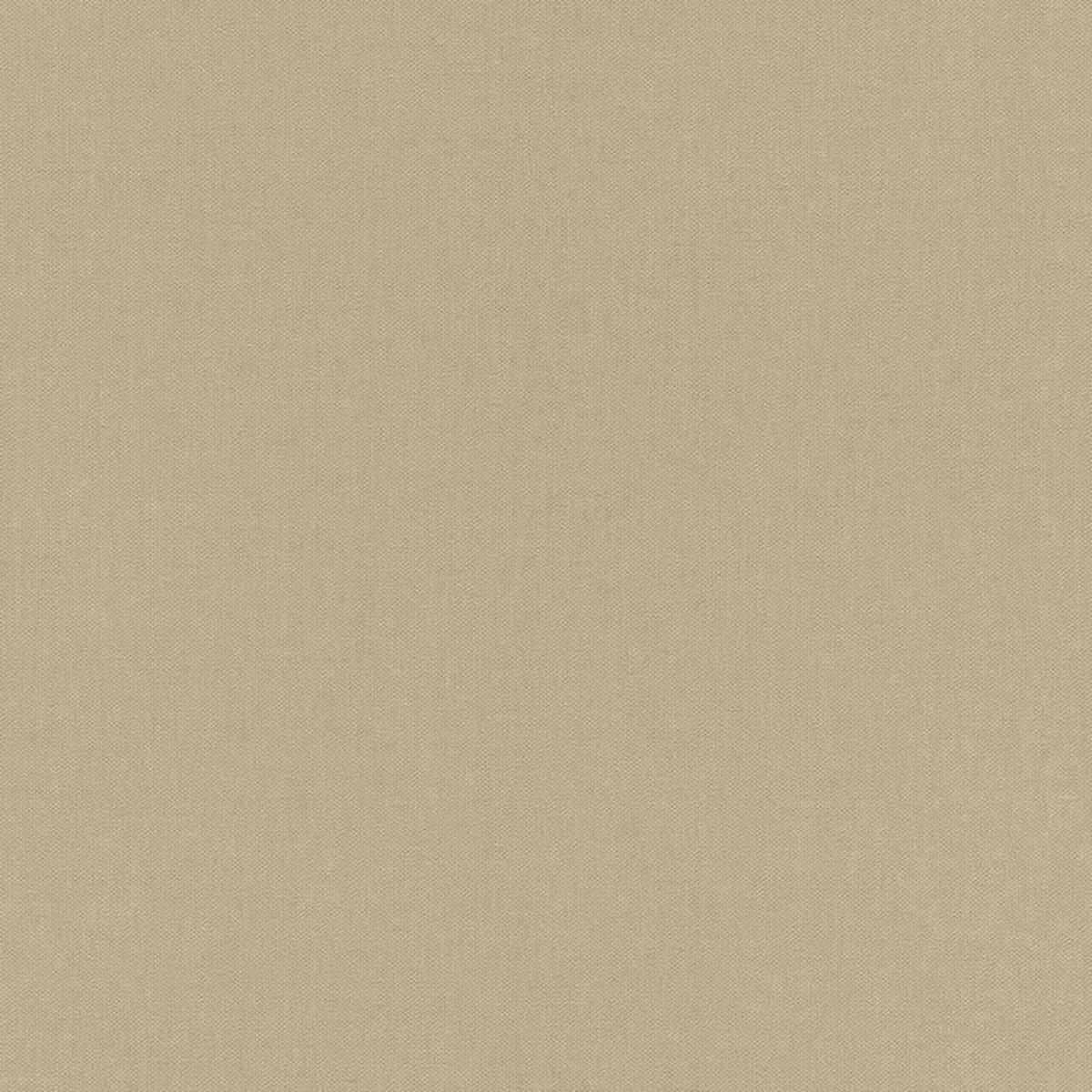 Обои флизелиновые Rasch Poetry коричневые 0.53 м 424096