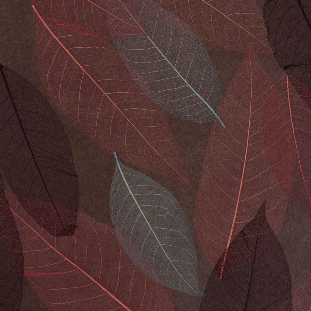 Натуральные обои Cosca Листья СПБ003479 листья