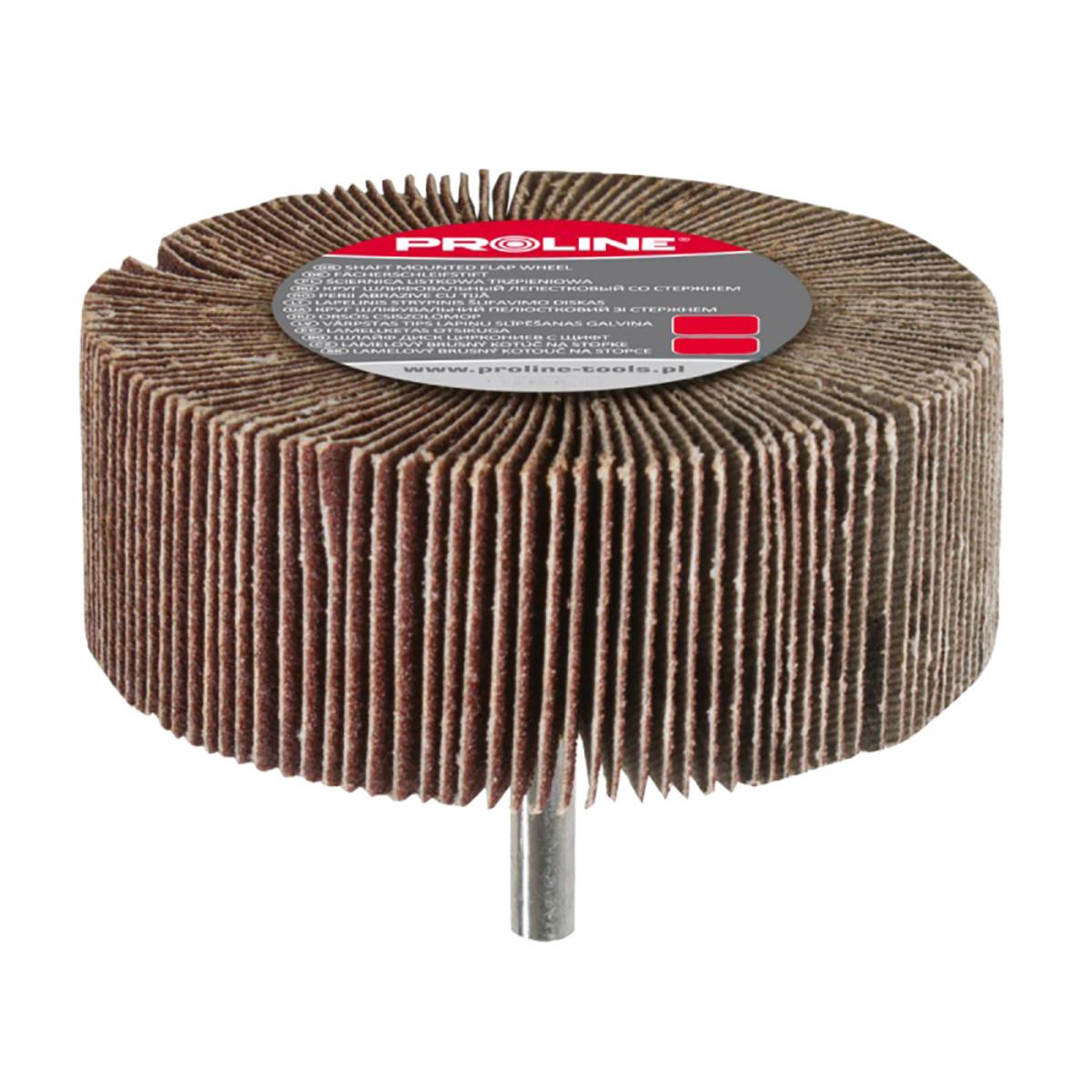 Шлифовальная головка Proline 44833 60х30 мм лепестковая (80 ед)