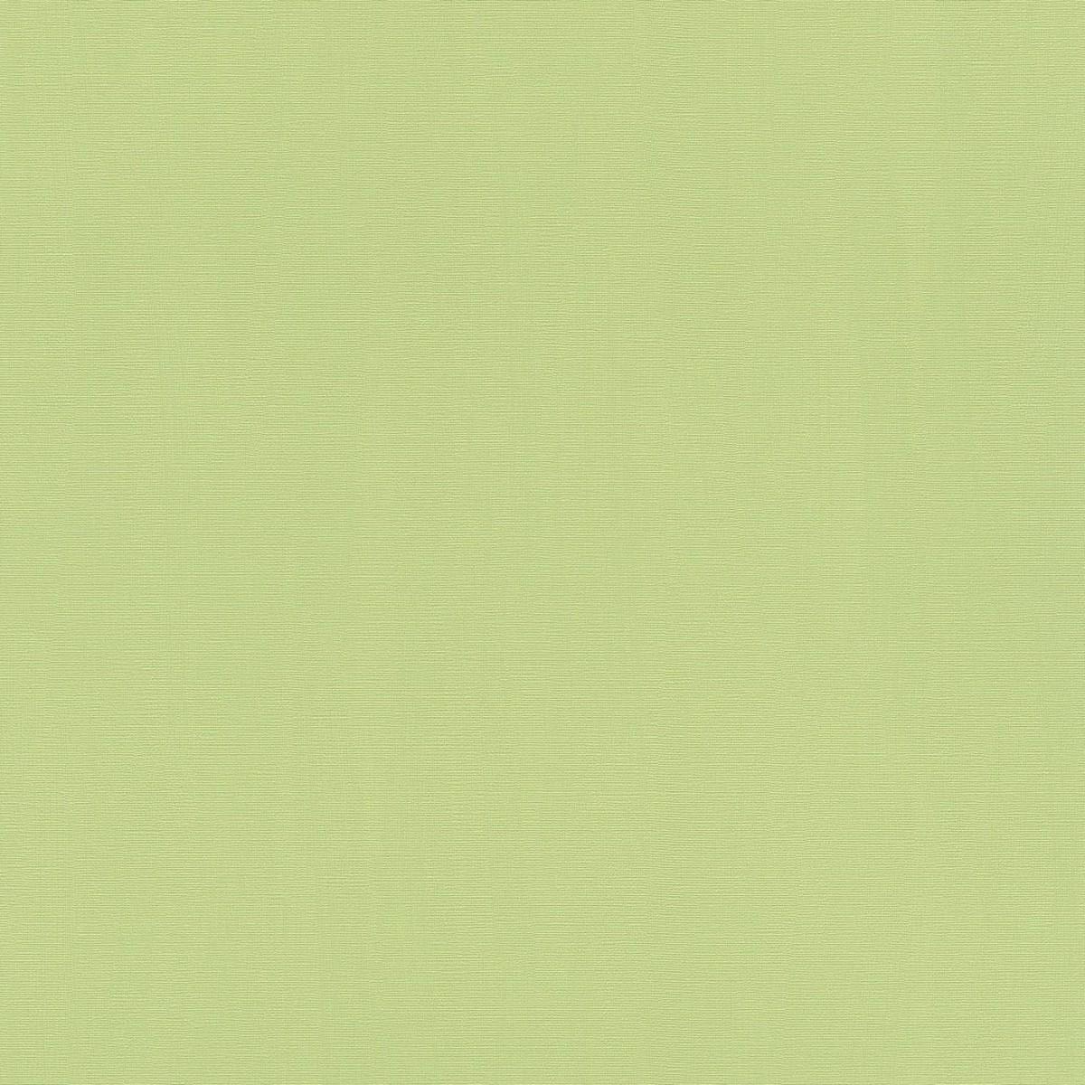 Обои флизелиновые Rasch Hyde Park зеленые 0.53 м 411829