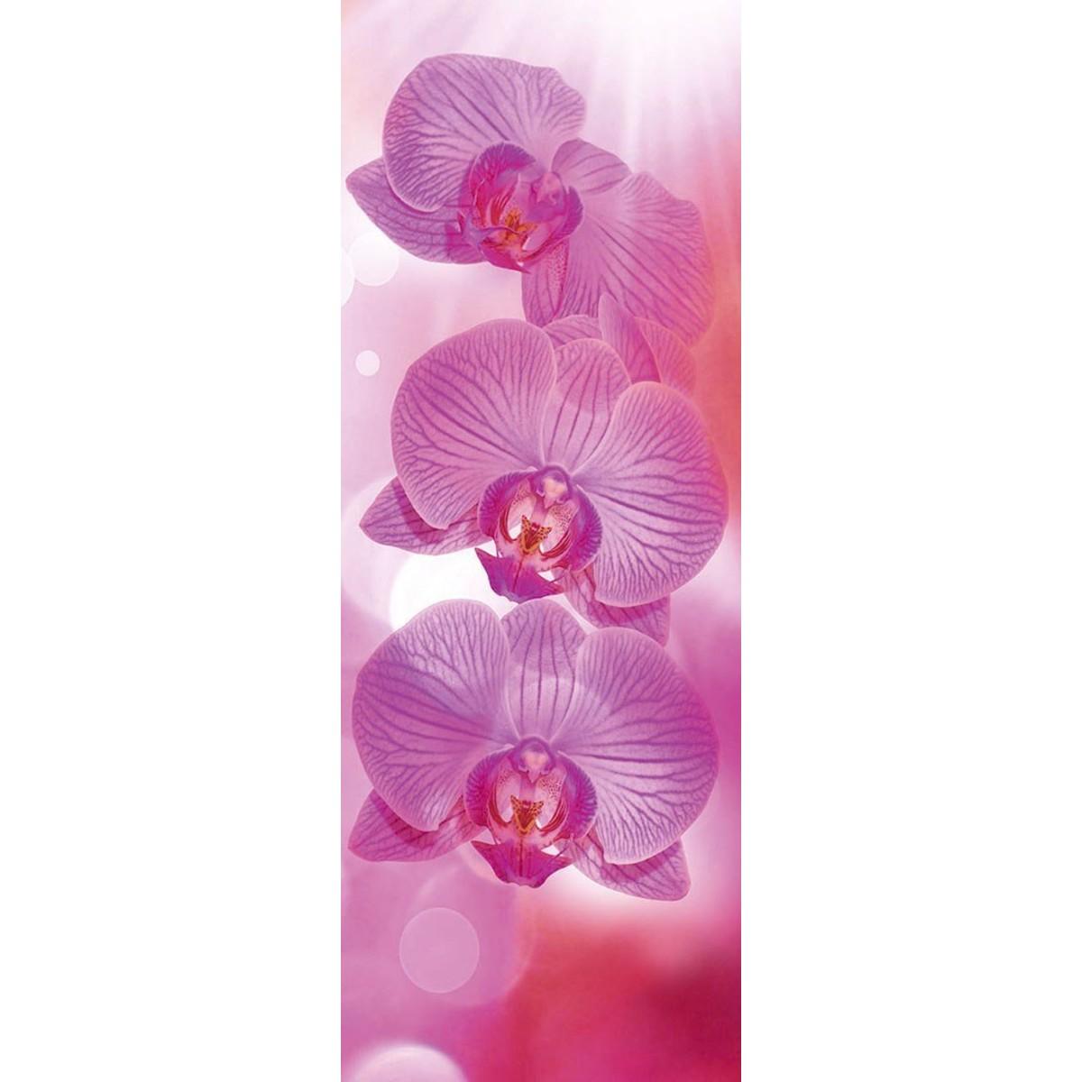 Фотообои DeliceDecor Розовое танго Ф 192 100х270 см