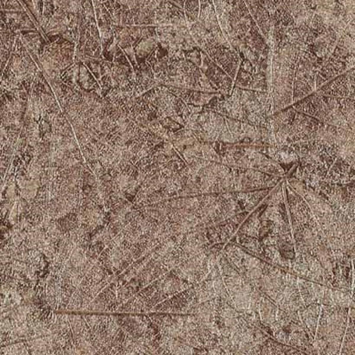 Виниловые обои York Wallcoverings коричневые TL2041 0.52 м