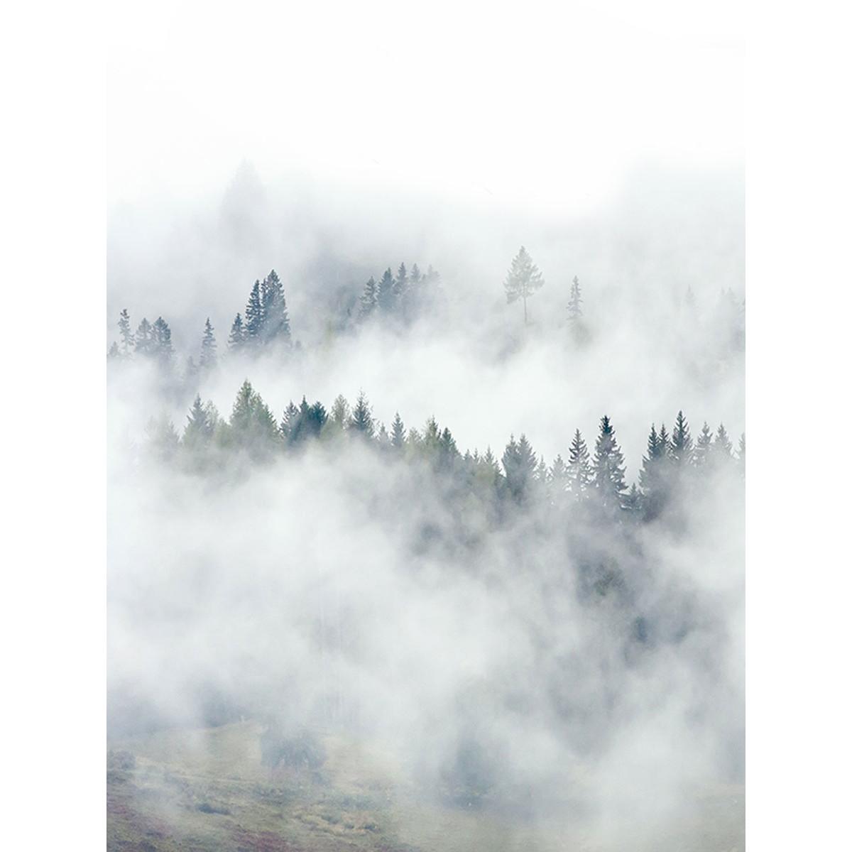 Фотообои Fotooboikin Туман fot-9333 200х270 см