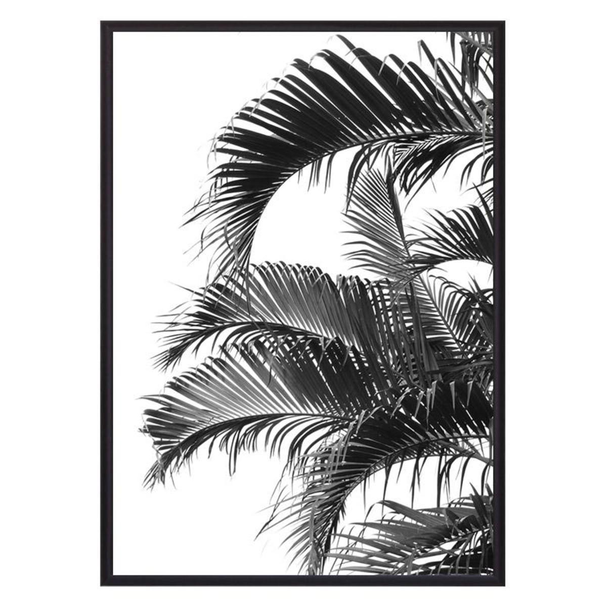 Постер Дом Корлеоне Пальмовые листья 07-0446-21х30 21х30 см