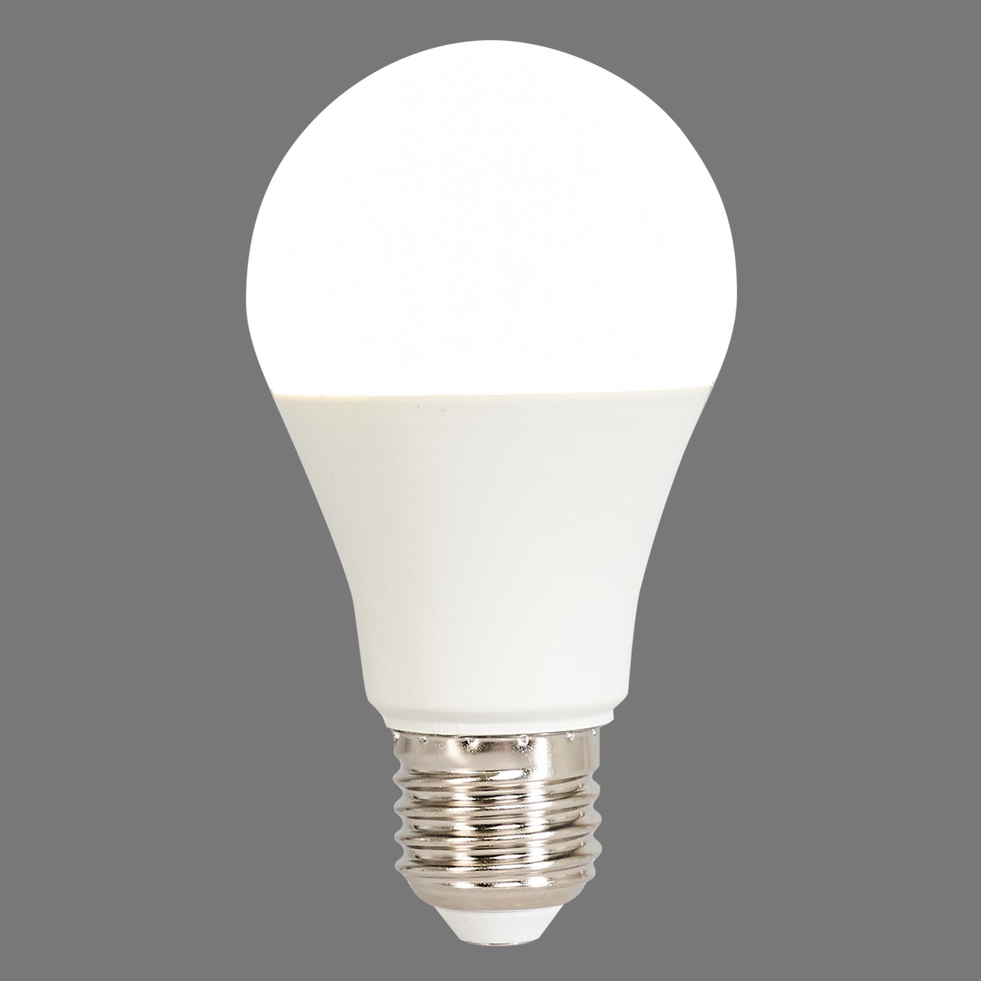 Лампа светодиодная Norma E27 170-240 В 16 Вт груша 1450 лм белый свет