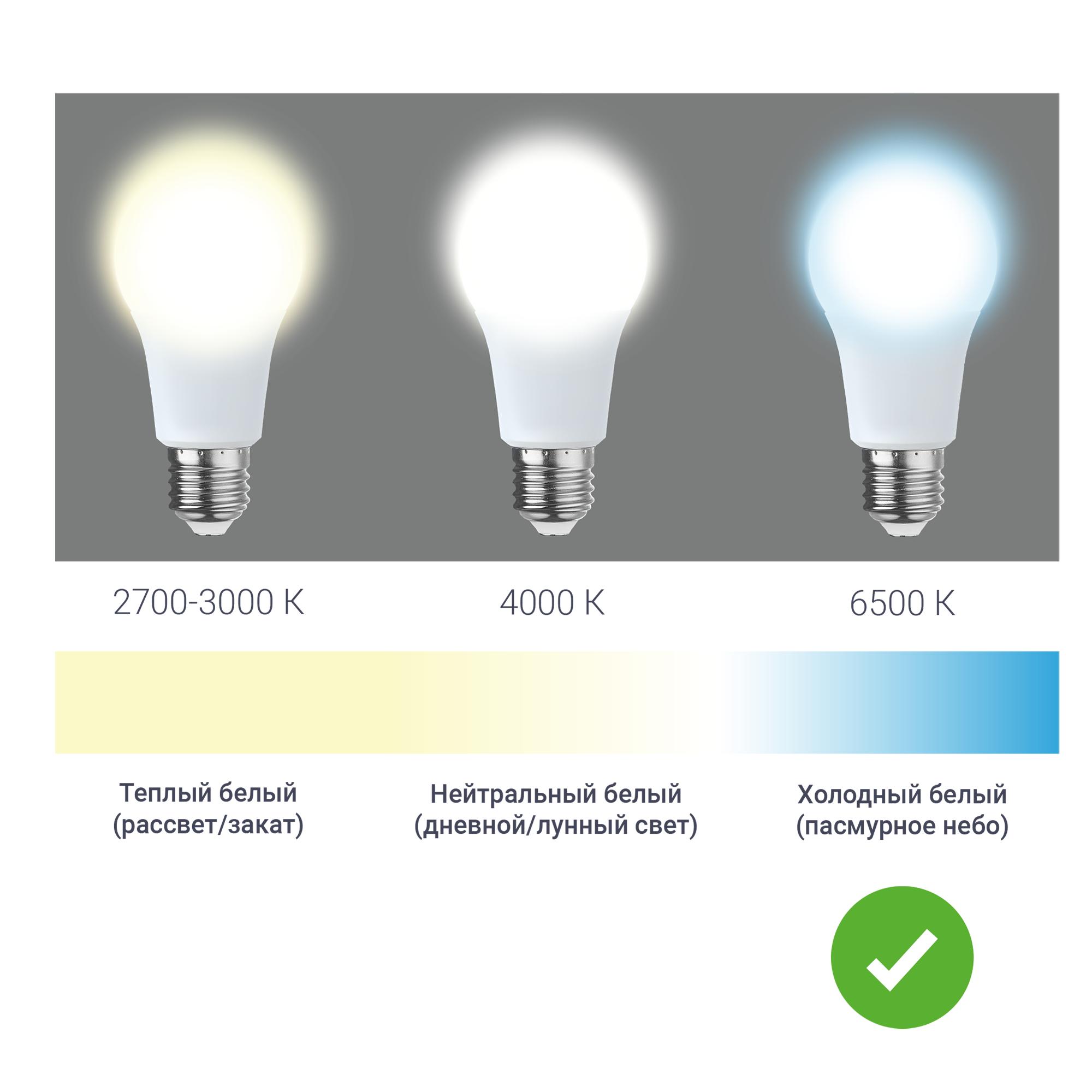 Лампа светодиодная Gauss E27 8 Вт шар матовый 560 лм холодный белый свет