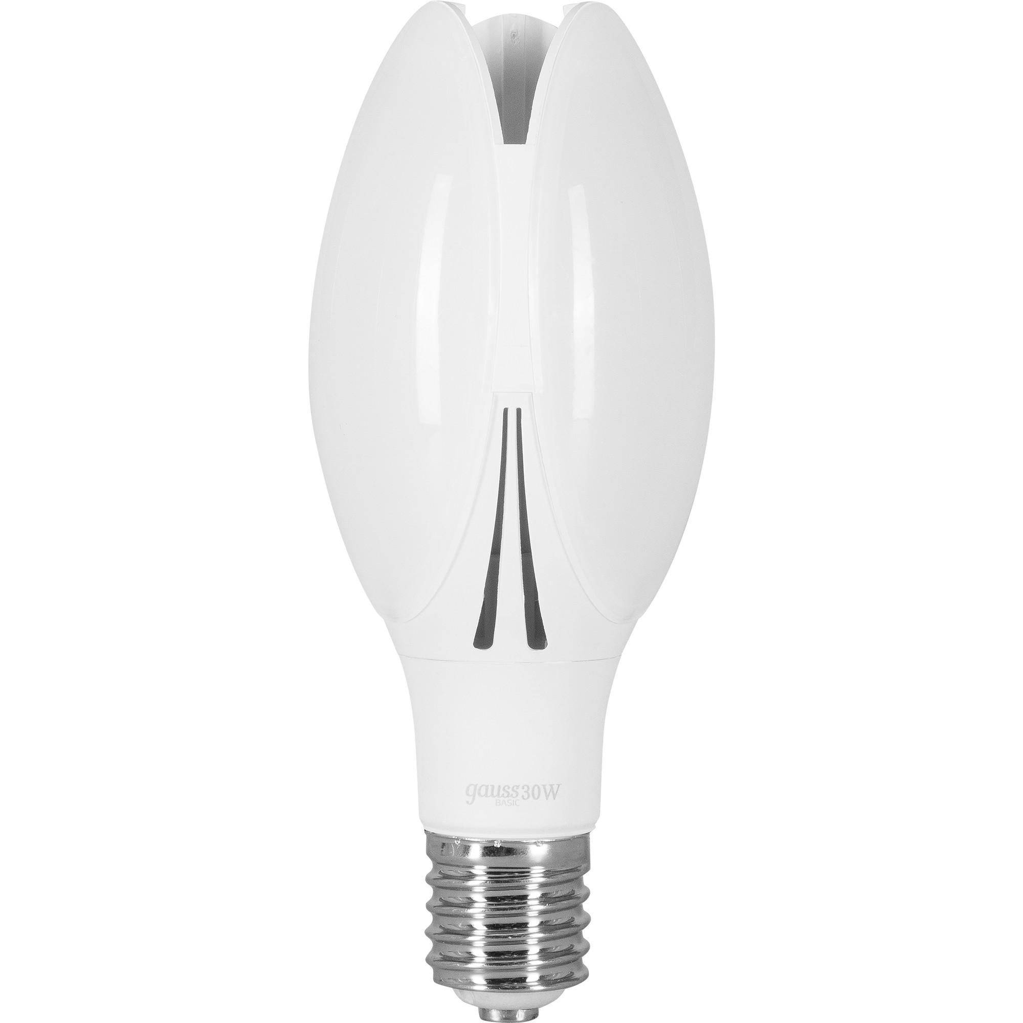 Лампа светодиодная Gauss Basic ВТ100 E40 230 В 30 Вт матовая 2950 лм холодный белый свет