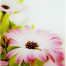 Картина на стекле 30х30 см «Beautiful» 103673549