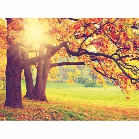Фотообои бумажные «Осень» 280х200 cм