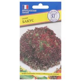 Семена Салат «Бакус»