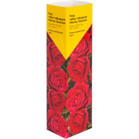Роза «Чайно-Гибрид» эконом, в ассортименте
