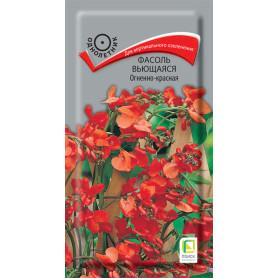 Семена Фасоль вьющаяся однолетняя «Огненно-красная», 1 г