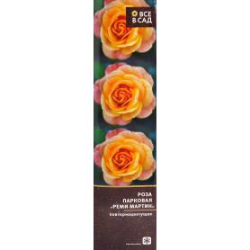 Роза парковая «Реми Мартин» в тубе