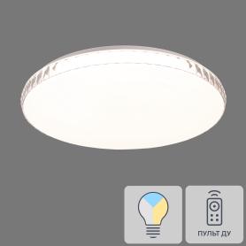 Светильник настенно-потолочный светодиодный Dina 2077/EL с пультом управления, 18 м², регулируемый свет, цвет белый