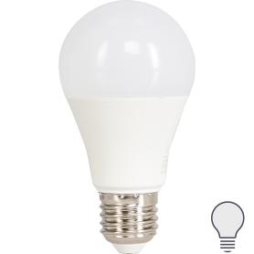 Лампа светодиодная Norma E27 170-240 В 16 Вт груша 1450 лм, белый свет