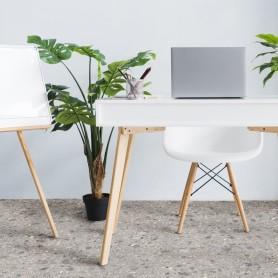 Линолеум «Концепт кратос» 42 класс 3 м
