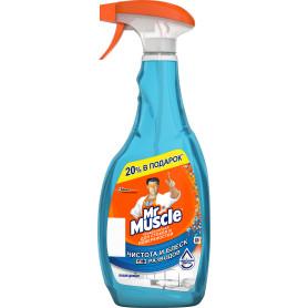 Средство для мытья стекол Мr.Muscle «Профессионал» 750 мл после дождя