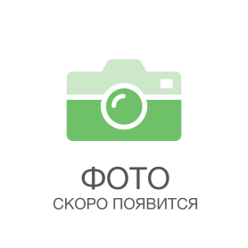 Дверь для шкафа SPACEO KUB 32.2x32.2 см, ЛДСП, цвет графит